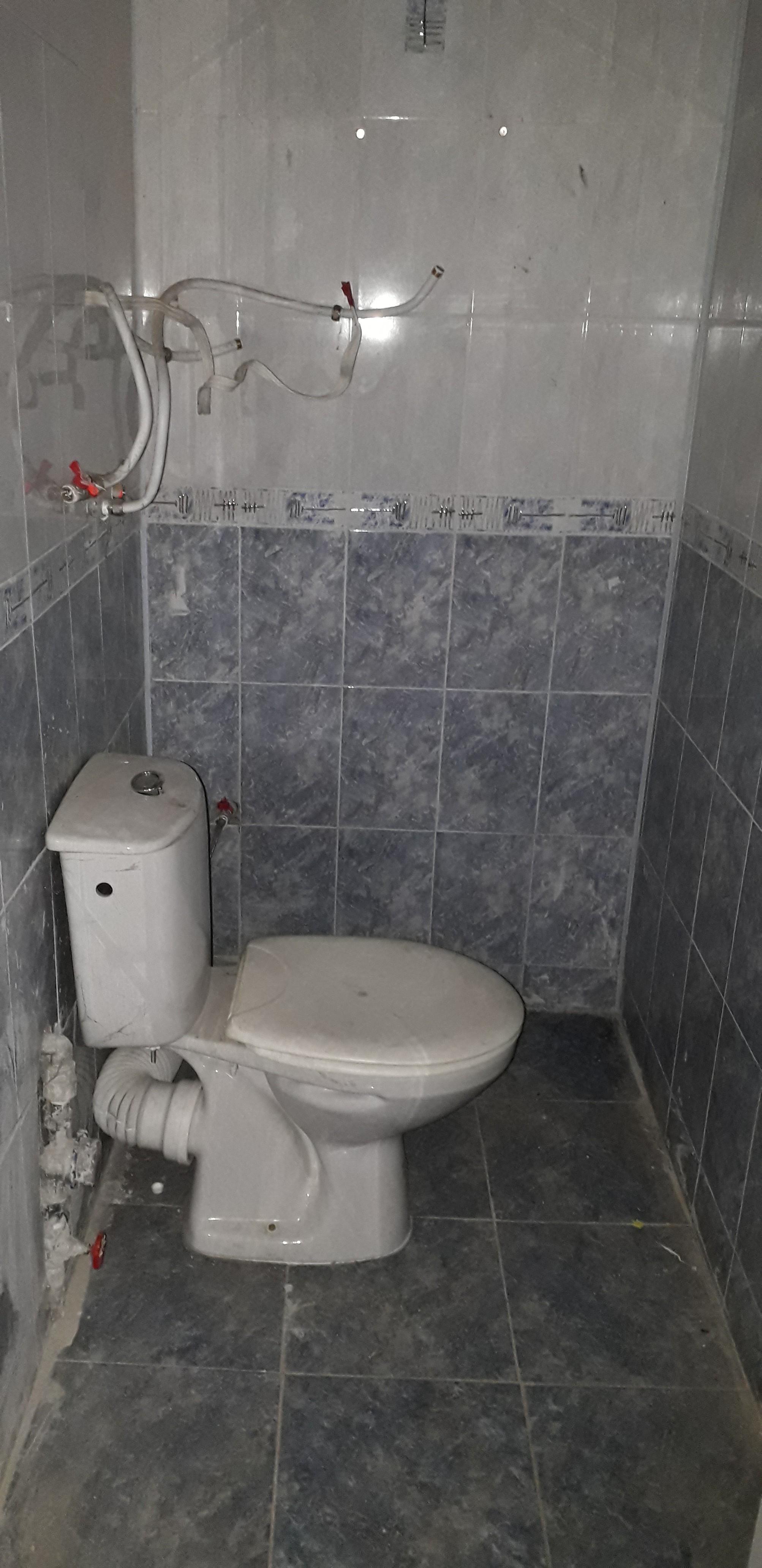 image3685